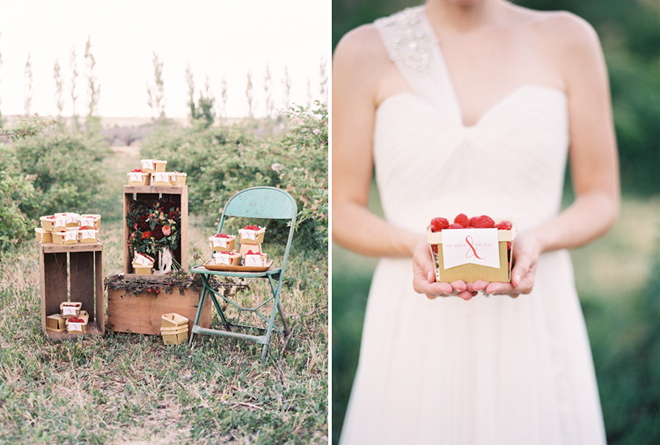 October Ink - Berry Patch Wedding - Green Apple Photography 3